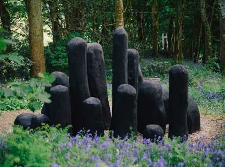 David Nash RA - Artworks and Sculptures in Cornwall - Sculpture Park and Gardens