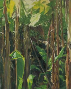 Gary Long, Tremenheere Bananas, oil on canvas, h. 51 x w. 40 cm, £1200 - Exhibition at Tremenheere Gallery, Cornwall