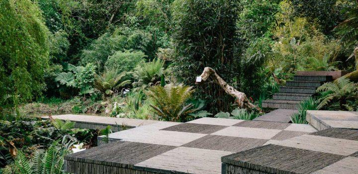 Tremenheere Sculpture Gardens in Cornwall.