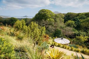 Garden Project Day - Events in Penzance - Things to do in Cornwall