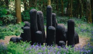 Our Story - Tremenheere Sculpture Gardens in Cornwall