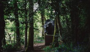 Tremenheere Sculpture Gardens in Penzance, Cornwall - Sculpture Park and Gardens
