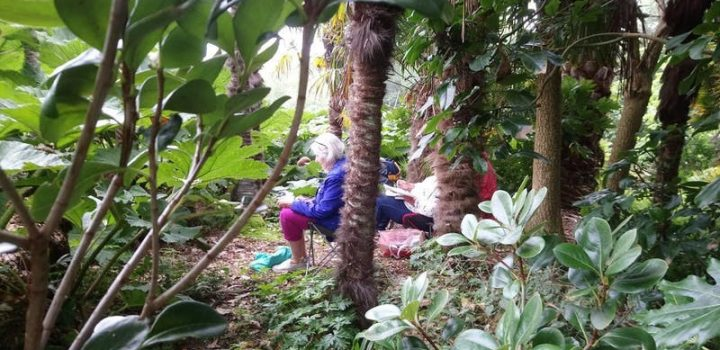 Art Workshops in Cornwall - Tremenheere Sculpture Gardens, Penzance