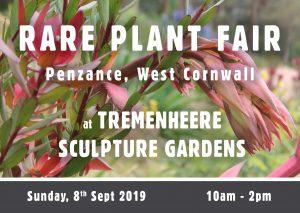 Rare Plant Fair at Tremenheere Sculpture Gardens