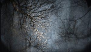 James Turrell, Aqua Oscura, Winter, 2015